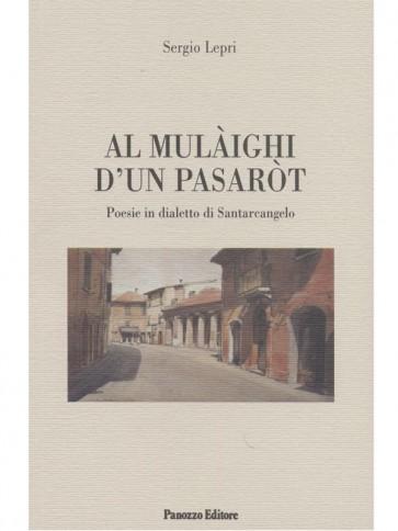Sergio Lepri Al mulaighi d'un pasarot Panozzo Editore